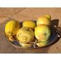 Sabonete Fruta Artesanal Glicerina - 510 Gramas (3 Unidades)
