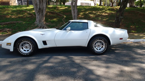 CORVETTE COLECIONADOR 1981 - STINGRAY