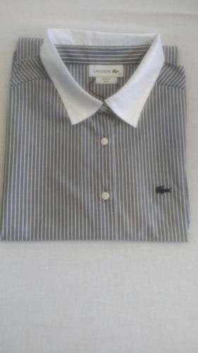 29856a50430df Camisa Social Lacoste Feminina Vários Modelos Cores Tamanho. Preço  R  249  99 Veja MercadoLibre