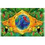 Saida De Banho/canga Bandeira Do Brasil C/animais Típicos