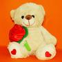 Urso Pelúcia Segurando Rosa Coração Love Amor Namorada