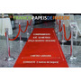 Passadeira Tapete Carpete Veludo Igreja Casamento Festa 1ml