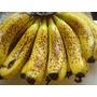 Muda De Banana Nanica,maça,ouro ,d