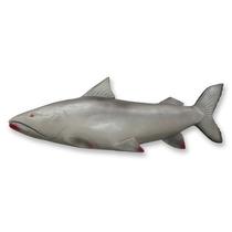 Peixe Piraiba 81 Cm - Decoração De Parede - Churrasqueira