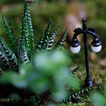 Micro Postes Luminárias Para Terrários Jardins Lampada 6v