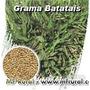 5kg Sementes De Grama Batatais - Frete Grátis