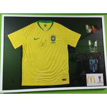 c81e7f6aec Busca SELEÇÃO BRASILEIRA com os melhores preços do Brasil ...