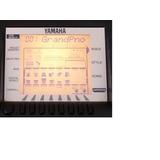 Display Visor Psr-530 Original Perfeito Tela Lcd Yamaha