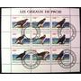 Fil A644 Aves De Rapina Águia Fauna Bloco Da Costa Do Marfim