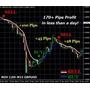Trendlines Profit - Indicador Para Forex E Opções Binárias Original