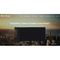 Seedbox 1 - 100 Gb - Torrents E Link Ilimitado - Rutorrent
