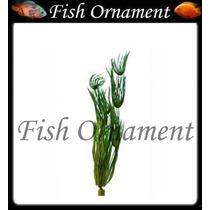 Planta Plastica Tetra Hairgrass 30cm Fish Ornament