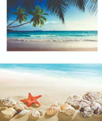 Kit Painel Praia 2x1,5 + Tapete Lona Banner (02)