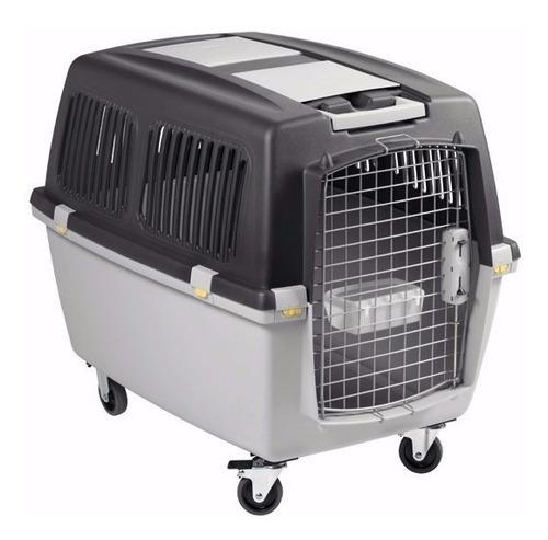 Caixa Transporte Cães Gulliver 7  Avião Retirar Vila Formosa