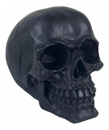 Crânio Caveira Esqueleto Preto Black Skull Decorativo