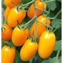 Sementes De Tomate Amarelo Formato Uva Organico Frete Gratis