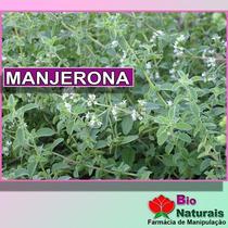 Chá De Manjerona Para Cólica Menstrual E Intestinal - 178*