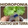 Kit Hidroponia Iniciante Completo + Curso Hidroponia
