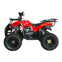 Carenagem Quadriciclo Hawk 110cc Little Bull Mbw