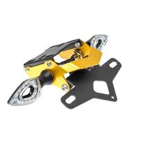 Suporte De Placa Eliminador Ironwing Yamaha Xj6 N - Xj6 F