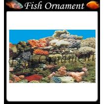 Painel Fundo De Aquario Boyu J54 50cm Fish Ornament