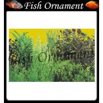 Painel Fundo De Aquario Boyu J56 60cm Fish Ornament
