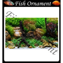 Painel Fundo Aquario Sea View Aquagardem 30 Fish Ornament