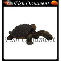 Soma 040352 Enfeite Resina Tartaruga Galápagos Fish Ornament