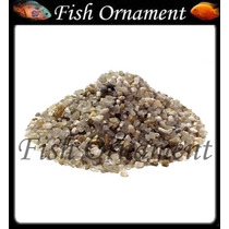 5 Kg De Cascalho Natural N 1 Fish Ornament