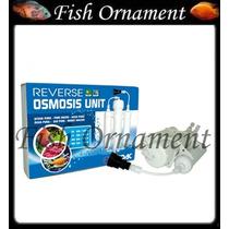 Prodac Filtro Reverse Osmose 50 Gal 180 Litros Fish Ornament