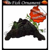 Enfeite De Resina Soma Tronco Duo 32 Fish Ornament