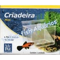Criadeira Mini Para Peixes Vivíparos - Mr Pet