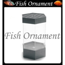 Beteira Aquario Para Betta Sextavada 1 Litro Fish Ornament