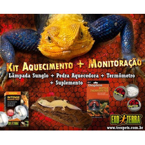 Kit Pedra Aquecida + Lâmpada Para Répteis - Iguana Jabuti