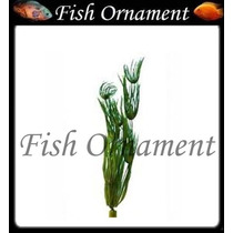 Planta Plastica Tetra Hairgrass 30cm Fish Ornament