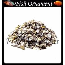 Substrato Aragonita 5kg Para Aquário Marinho Fish Ornamet