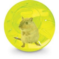 Globo Bola Hamster Roedor Grande 18cm - Importado - Colorido