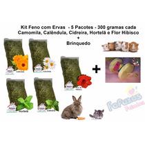 Kit Feno + Brinquedo Coelho (5 Pacotes Com Ervas)
