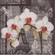 Kit C/ 20 Guardanapos Decoupage Orquideas Paris 33cm Tec