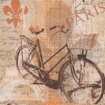 Kit C/ 20 Guardanapos Decoupage Bicicleta Vintage 33cm Tec