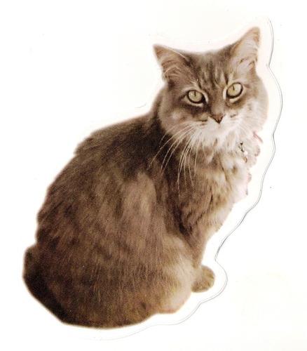 Adesivo Gato. Alta Resolução, Frete Grátis, + Super Promoção