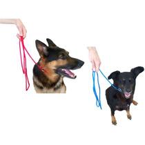 Guia Unificada 6mm Enforcador Trava P/ Cães Cachorros 1,95m