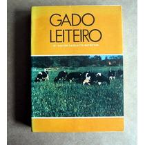 Gado Leiteiro - Dr. Walter Cazelatto Batistton