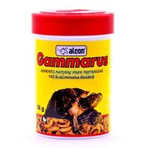 Ração Para Répteis Gammarus Russo Alcon 14g - Aquapet