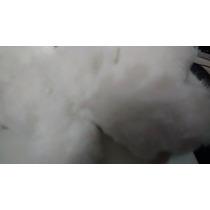 Fibra Enchimento Almofadas, Travesseiros, Pelucia. Pct. 2 Kg