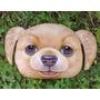 Almofada Criativa 3d Cachorro Cão Raça Golden | Grande