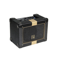 Cubo Caixa Contra Baixo Bass Amplifier Tb100 Thunderbass