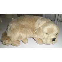 Cachorro Golden Retriver Corpo Pelúcia Mini Perfect Petzzz