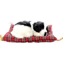 Cachorro Border Collie Perfect Petzzz Pelúcia 15cm