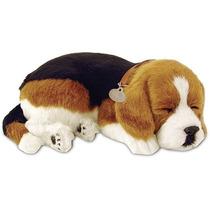 Cachorro Beagle Perfect Petzzz Que Respira Dormindo